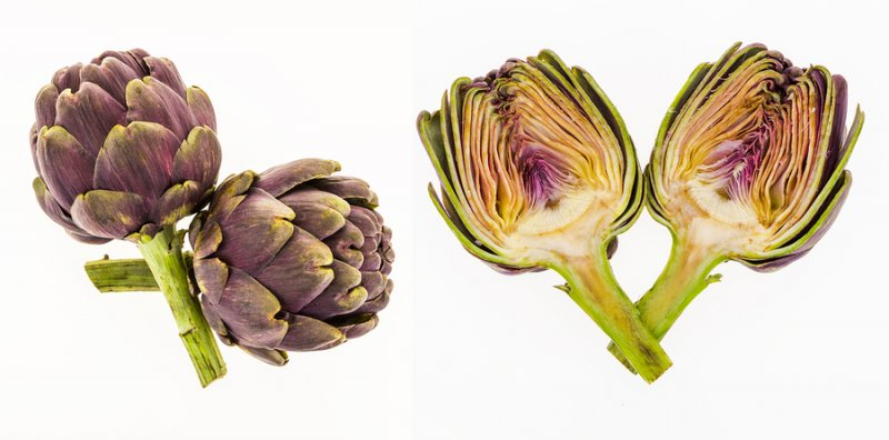 Artichokes boost memory through Long-Term Potentiaton