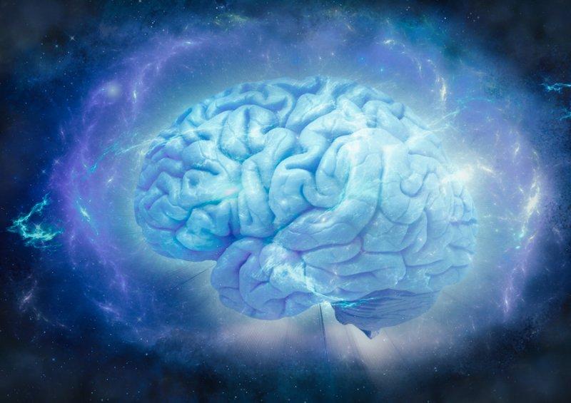 Centrophenoxine increases brain energy