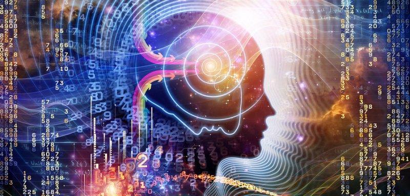 Gotu kola improves memory and repairs neurons