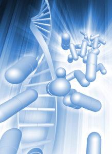 NADH regenerates brain stem cells