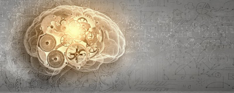 N-Acetyl L-Tyrosine boosts memory and cognition