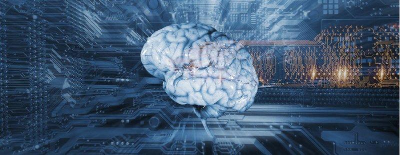 St-Johns-wort-benefits-to-the-brain