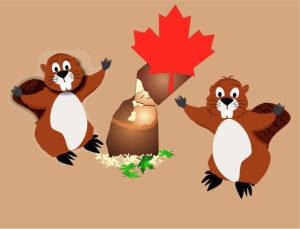 Canada nootropics