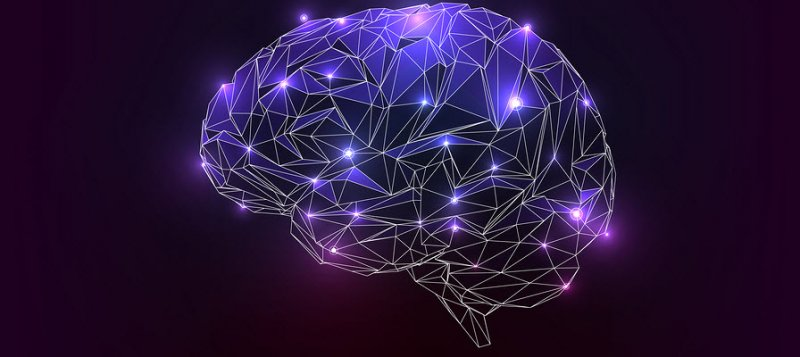 DMAE-nootropic-protects-the-brain