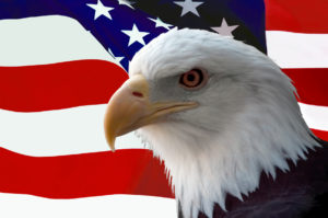 United States nootropics