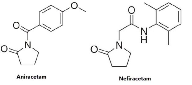 Nefiracetam – Nootropics Expert