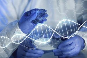 Nootropics and brain chemistry