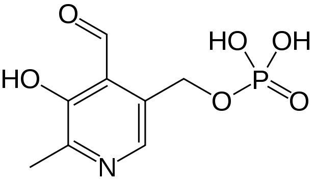 Vitamin B6 (Pyridoxine) – Nootropics Expert