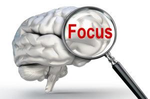 Pycnogenol improves memory & focus