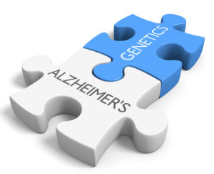 nootropic supplements to prevent Alzheimer's