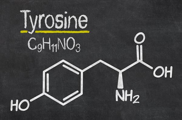 Tyrosine – Nootropics Expert